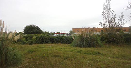 Pornichet : un projet de 204 logements près d'Intermarché
